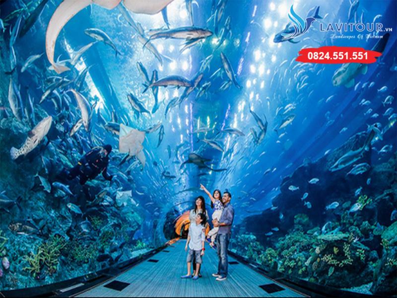 Tour Singapore - Sentosa - Sea Aquarium 3n2đ 5