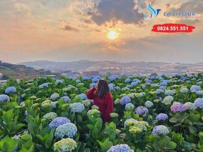 Tour Đà Lạt - Phan Thiết - Mũi Né 4n3đ 20