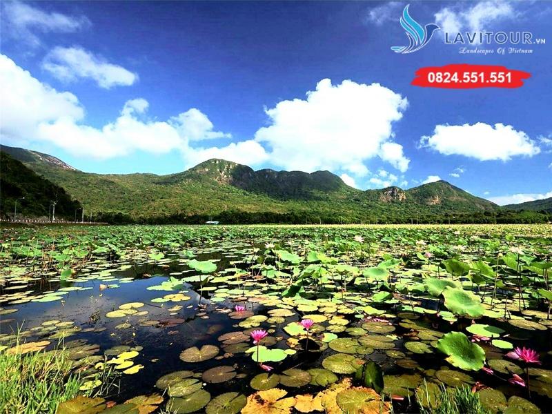 Tour Côn Đảo Linh Thiêng - Bao Vé Máy Bay 2n1đ 5