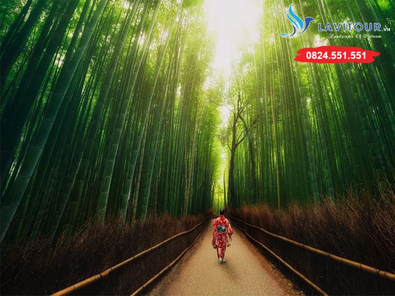 Tour Nhật Bản - Kansai - Kyoto - Osaka 4n4đ 9