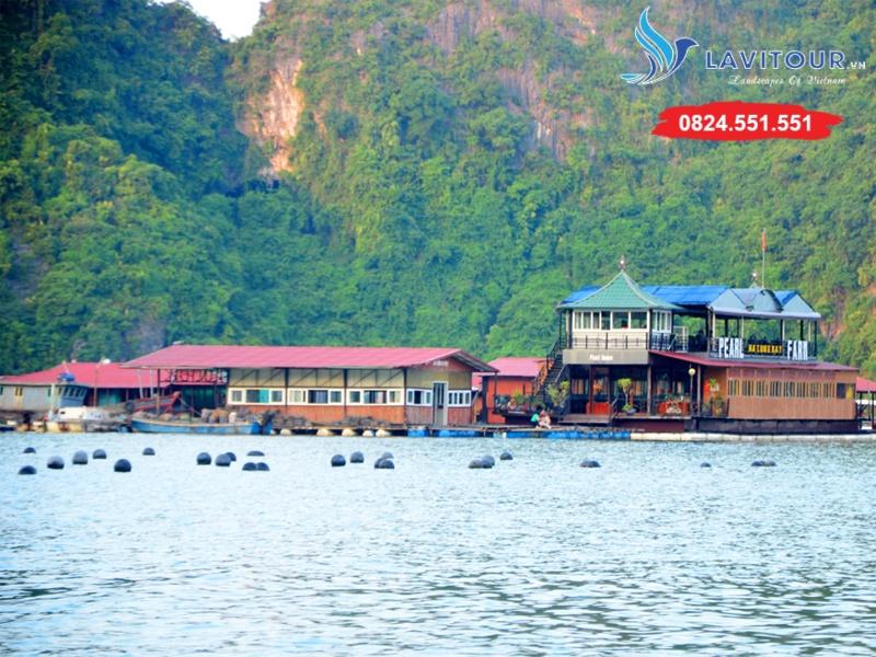 Tour Sài Gòn - Vịnh Hạ Long - Đảo Cát Bà 3n2đ 12
