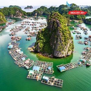 Tour Sài Gòn - Vịnh Hạ Long - Đảo Cát Bà 3n2đ 1