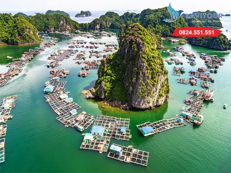 Tour Sài Gòn - Hải Phòng - Cát Bà - Vịnh Lan Hạ 3n2đ 7