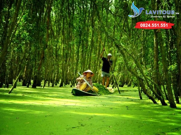 Tour Châu Đốc - Hà Tiên - Rừng Tràm Trà Sư 3n2đ 12