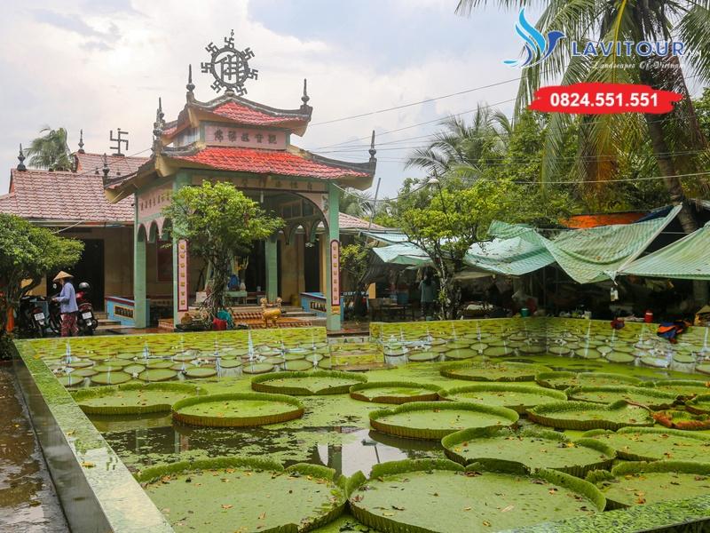 Tour Đồng Tháp - Chùa Lá Sen - KDL Xẻo Quít 1N 3