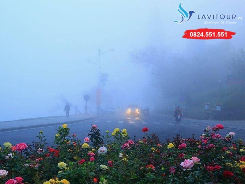Tour Đà Lạt - Langbiang - Thác Voi - Hồ Vô Cực 4n3đ 8