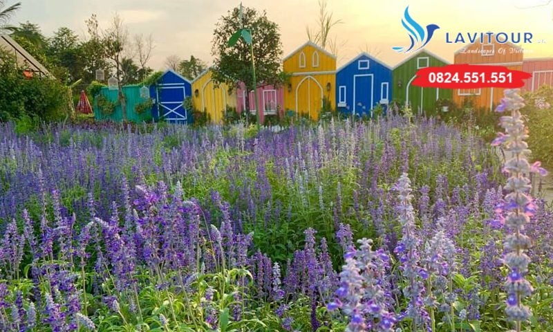 Vườn hoa đẹp tại Sài Gòn - nơi check in tuyệt vời 2
